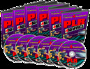 Thumbnail PLR for Newbies - PLR training videos for Internet Marketing